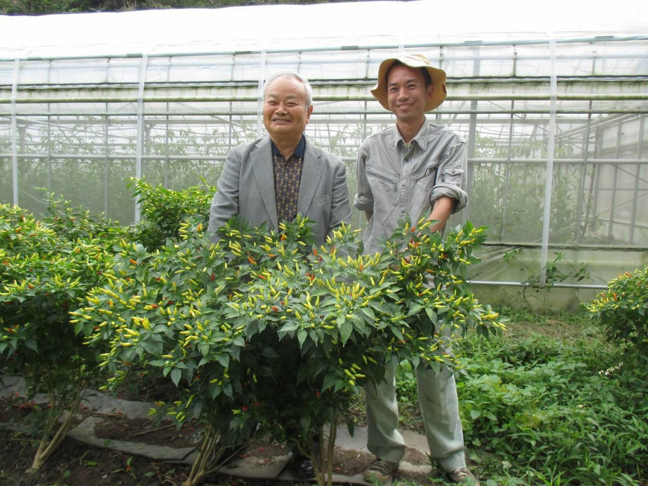 Prof. Higa and the manager of the farm