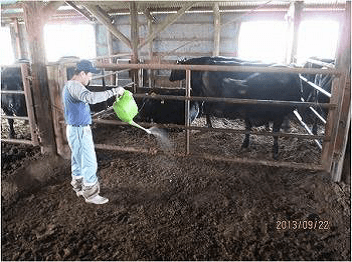 Continuing Dairy Farming in Fukushima, after the earthquake | Case
