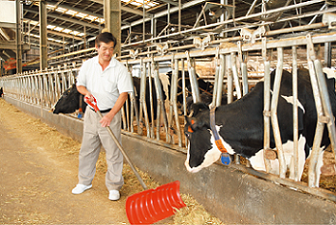 Delicious EM Milk, Less Stress for Cows